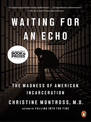 cover image of Waiting for an Echo