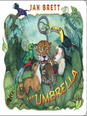 cover image of The Umbrella