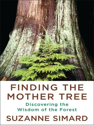 cover image of Finding the Mother Tree
