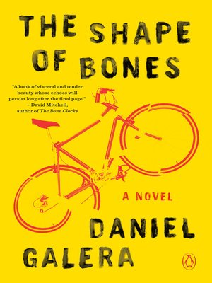 cover image of The Shape of Bones