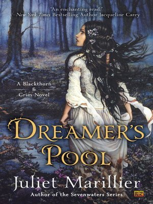 cover image of Dreamer's Pool