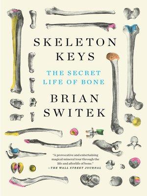 cover image of Skeleton Keys