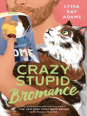 cover image of Crazy Stupid Bromance