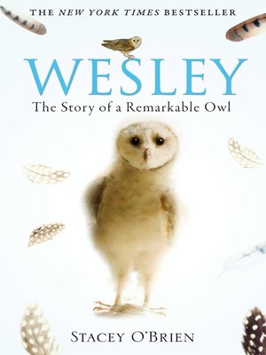 cover image of Wesley