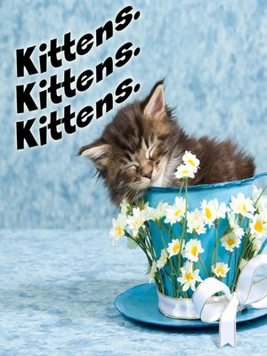 cover image of Kittens. Kittens. Kittens.