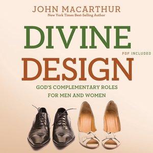 cover image of Divine Design