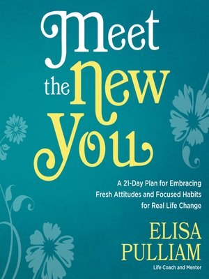 cover image of Meet the New You