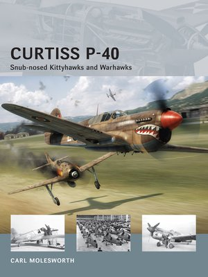 cover image of Curtiss P-40