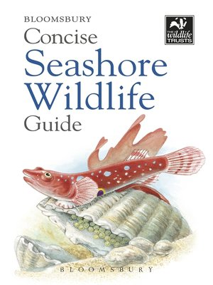 cover image of Concise Seashore Wildlife Guide