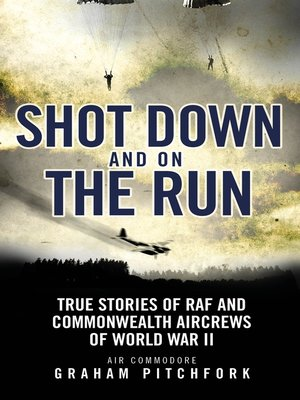 cover image of Shot Down and on the Run