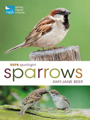 cover image of RSPB Spotlight Sparrows