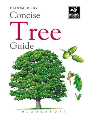 cover image of Concise Tree Guide