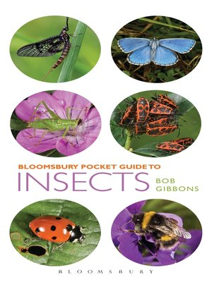 cover image of Pocket Guide to Insects