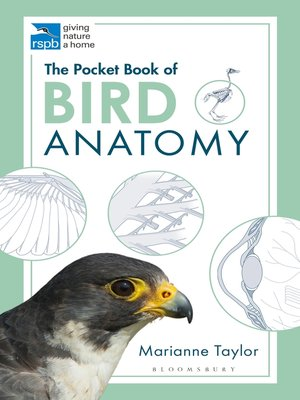 cover image of The Pocket Book of Bird Anatomy
