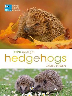 cover image of RSPB Spotlight Hedgehogs