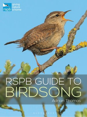 cover image of RSPB Guide to Birdsong