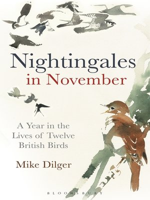 cover image of Nightingales in November
