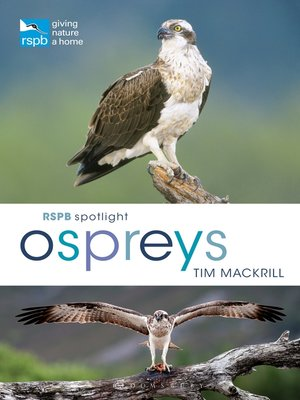 cover image of RSPB Spotlight Ospreys