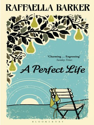 cover image of A Perfect Life