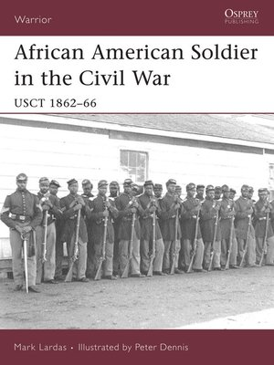 cover image of African American Soldier in the Civil War