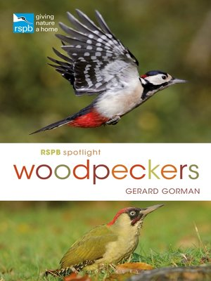 cover image of RSPB Spotlight Woodpeckers