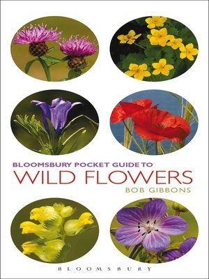 cover image of Pocket Guide to Wild Flowers