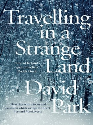 cover image of Travelling in a Strange Land