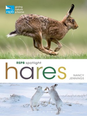 cover image of RSPB Spotlight Hares