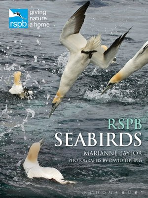 cover image of RSPB Seabirds