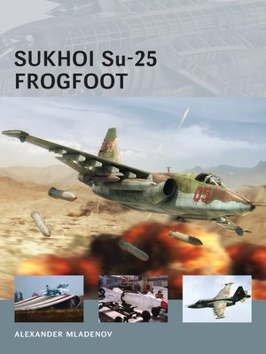 cover image of Sukhoi Su-25 Frogfoot