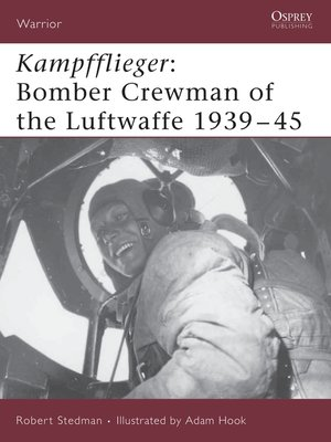 cover image of Kampfflieger