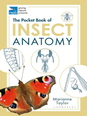 cover image of The Pocket Book of Insect Anatomy
