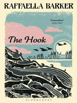 cover image of The Hook