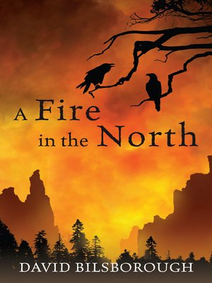 cover image of A Fire in the North