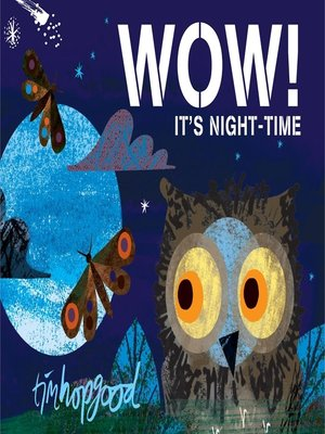 cover image of WOW! It's Night-time