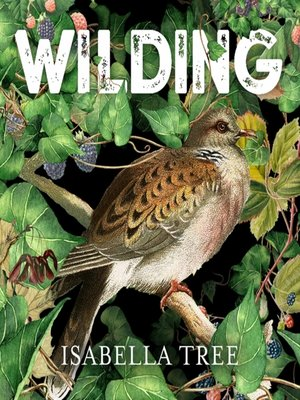 cover image of Wilding