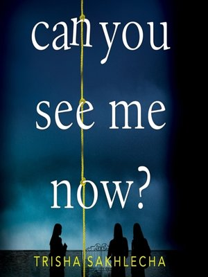 cover image of Can You See Me Now?