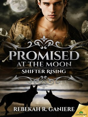 cover image of Promised at the Moon