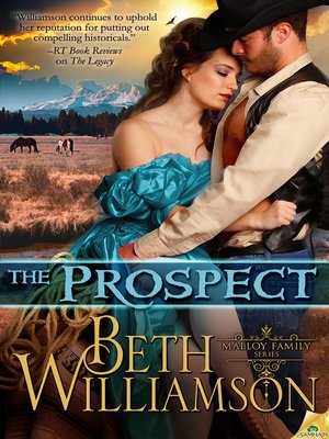 cover image of The Prospect