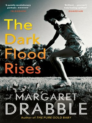 cover image of The Dark Flood Rises