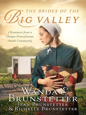 cover image of The Brides of the Big Valley