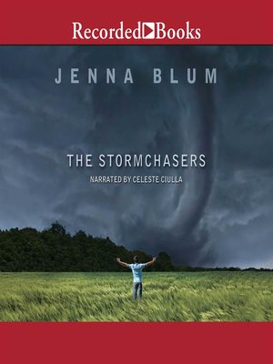 cover image of The Stormchasers