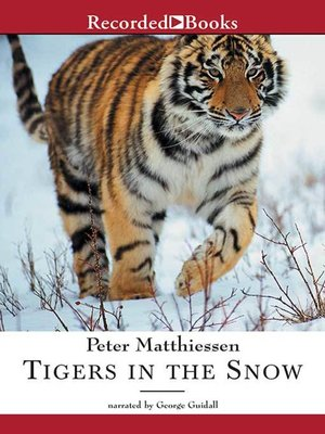 cover image of Tigers in the Snow