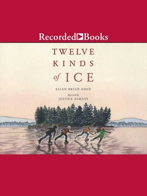 cover image of Twelve Kinds of Ice