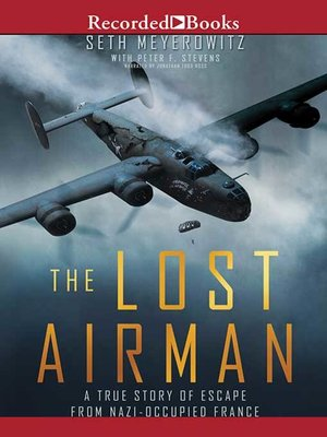 cover image of The Lost Airman
