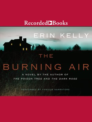 cover image of The Burning Air