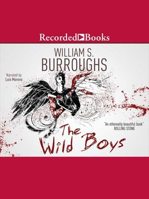 cover image of Wild Boys