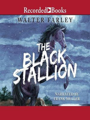cover image of The Black Stallion