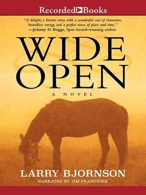 cover image of Wide Open
