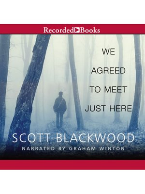 cover image of We Agreed to Meet Just Here